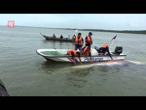 Whale carcass found near Batu Pahat