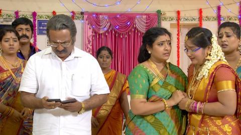 Priyamanaval Episode 257,  24/11/15