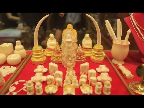 Illegal Ivory Trade has No Place in Thailand