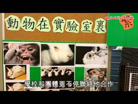 小孩換位變動物 灌輸領養價值觀