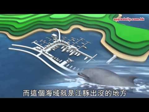 【中資再來襲】遊艇豪宅進駐南丫島 瀕危動物恐絕種