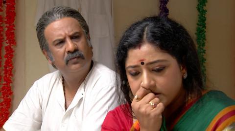Priyamanaval Episode 256,  23/11/15